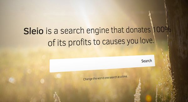 Choosy Charity Search Engines