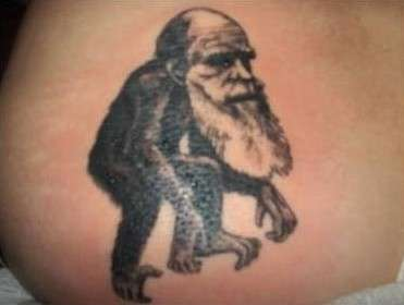 Evolutionary Inks