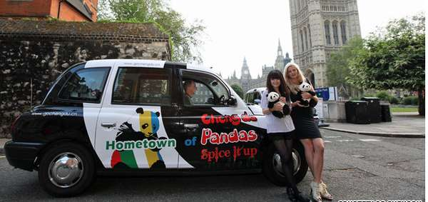 Bear-Patterned Olympic Taxis