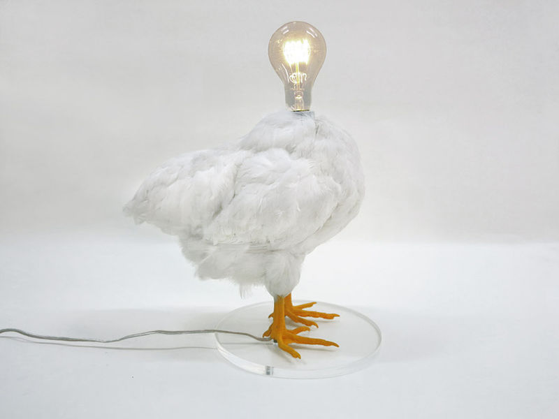 Taxidermy Chicken Lamps