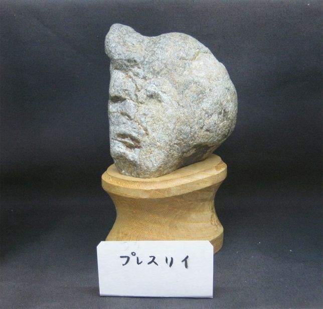Stone-Faced Found-Art Museums