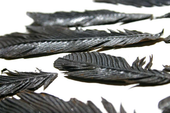 Edible Avian Feathers
