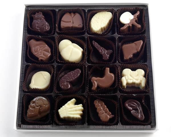 Delicious Anatomical Chocolates