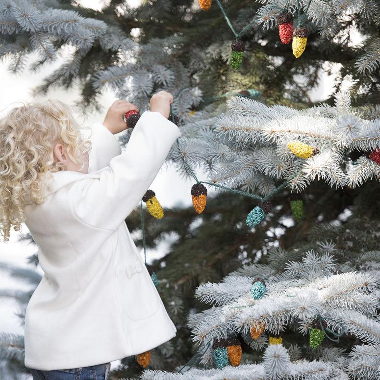 Bird Seed Christmas Decorations
