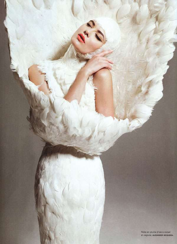 Fantastic Feathered Editorials