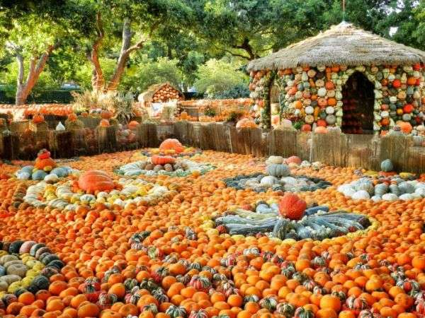 Gourd-Filled Towns
