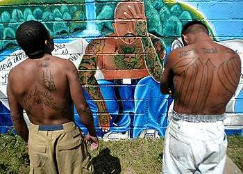 Cities Sue Gangs