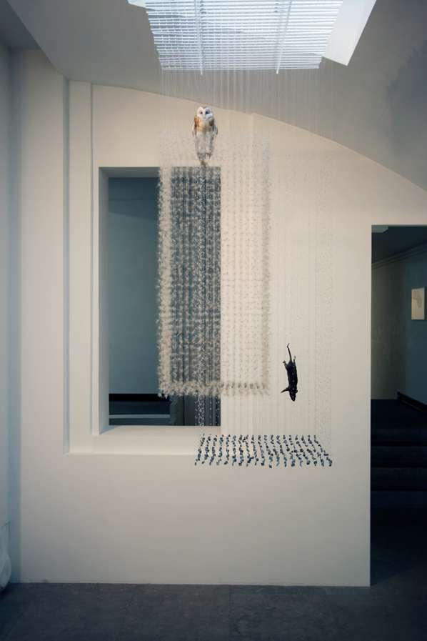 Clair Morgan Suspended Animal Installations