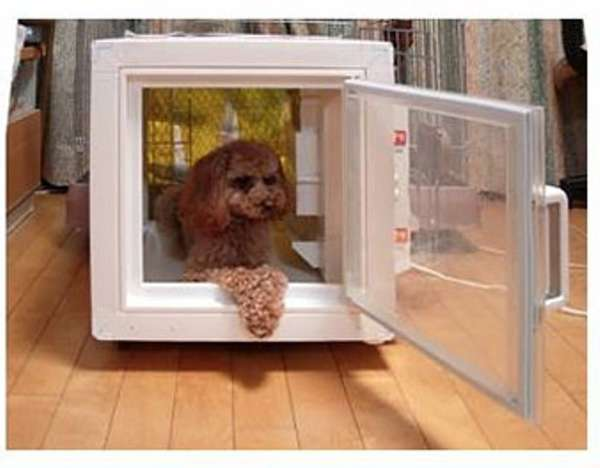 climate control pet kennel