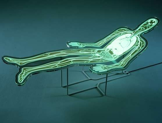 Luminous Anatomy Loungers