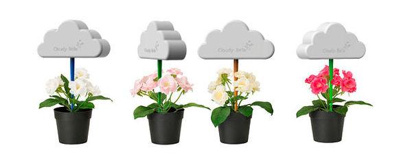 Drizzling Planter Companions
