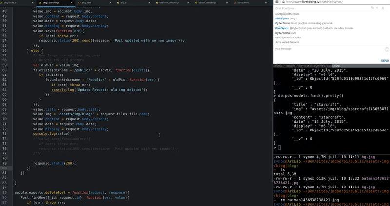 Educational Coding Livestreams