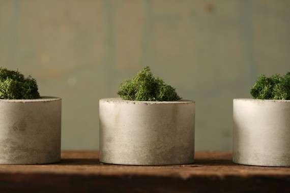 Delightful Lichen Jardinieres