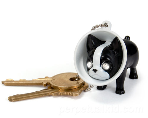 Pet-Shaming Keychains