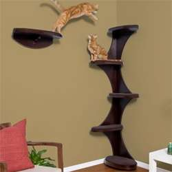 Contemporary Cat Corner