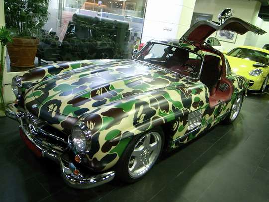 Controversial Camouflage Cars