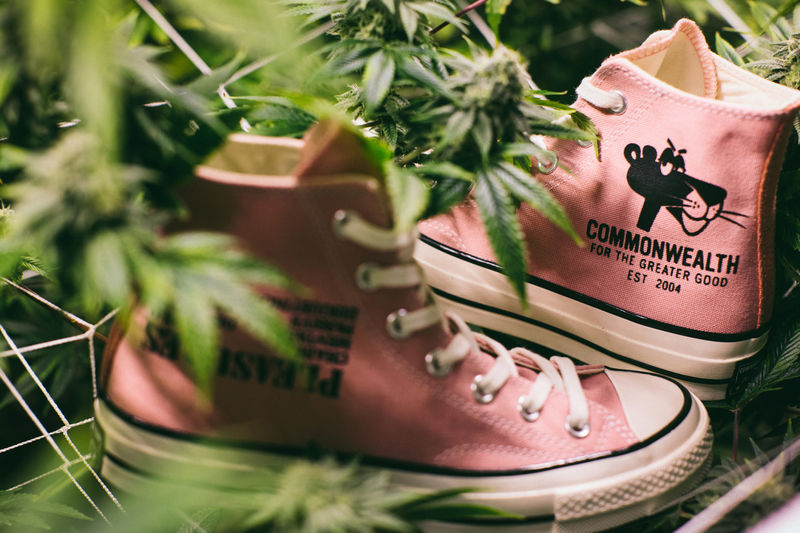 Pink Panther Sneakers