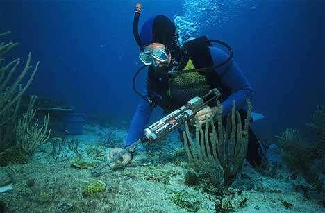 Reef Restoration Plans