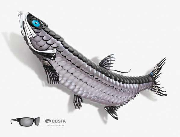 Costa Sunglasses Ads
