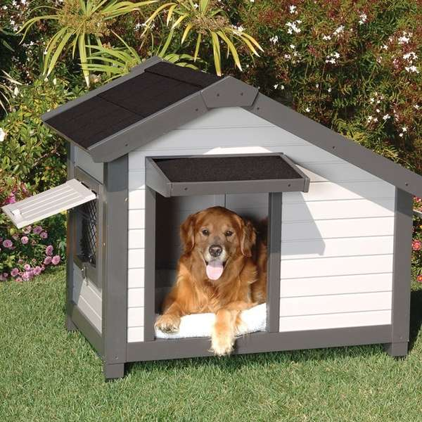 8 Backyard Ideas To Delight Your Dog: Miniature Dog Cottages : Cottage Dog House