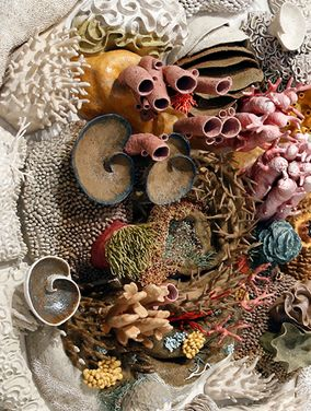 Ceramic Coral Reefs