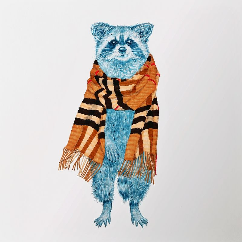 Couture Raccoon Portraits