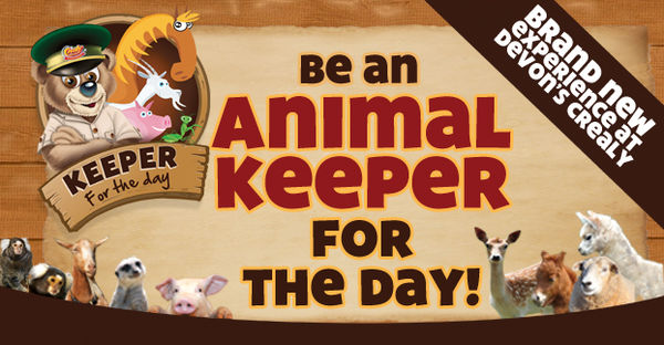 Kid Zookeeper Programs