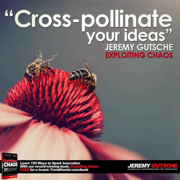 Cross-Pollinate Your Ideas