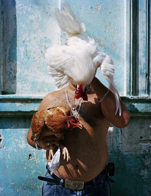 Alluring Havana Photography