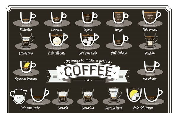 Coffee Brewing Infographics