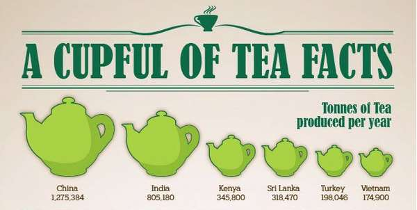 Cupful of Tea Facts