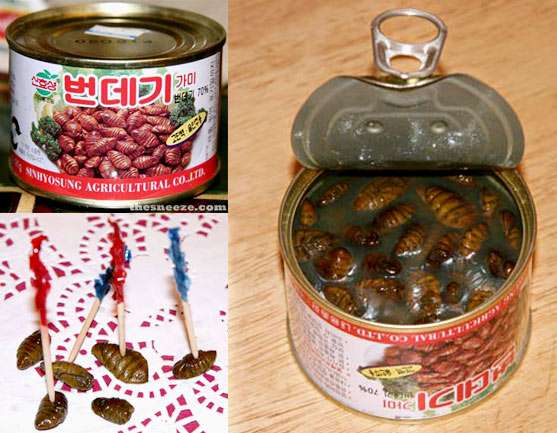 Curious Canned Culinary Treats