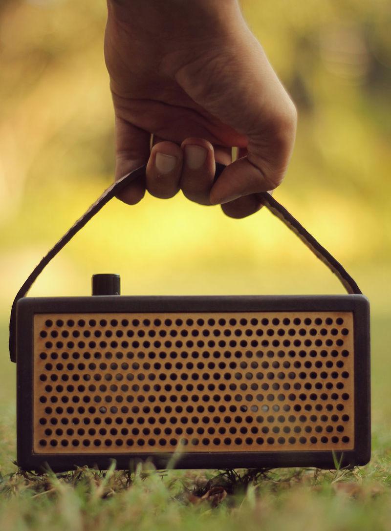 Handcrafted Custom Speakers
