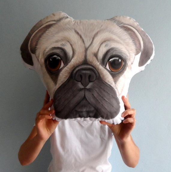 Customized Pet Pillows