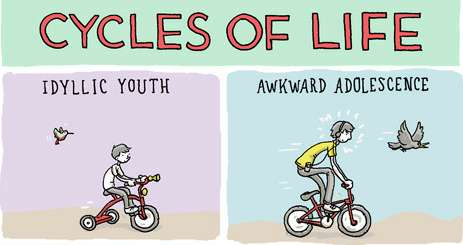 cycles of life comic