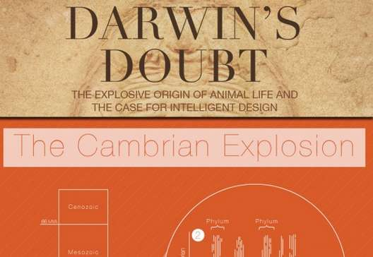 Darwin-Countering Book Infographics