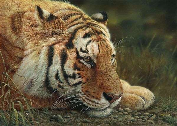 Hyperreal Nature Paintings
