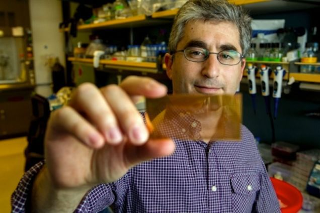 Disease-Diagnosing Microchips