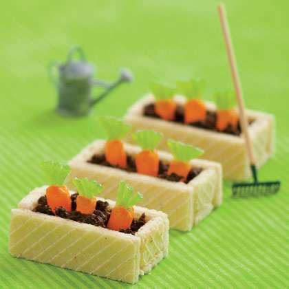 Enticing Carrot Patch Treats