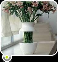 Stem-Baring Vases
