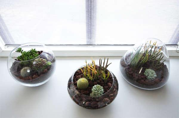 Transparent Handmade Planters