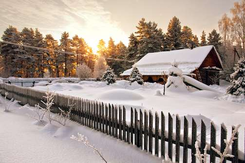 Serene Winterscapes