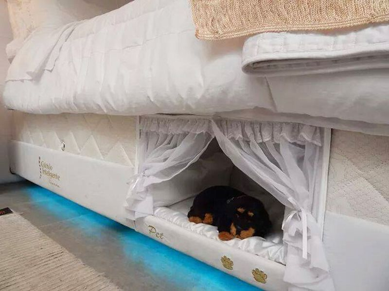 Box Spring Pet Beds