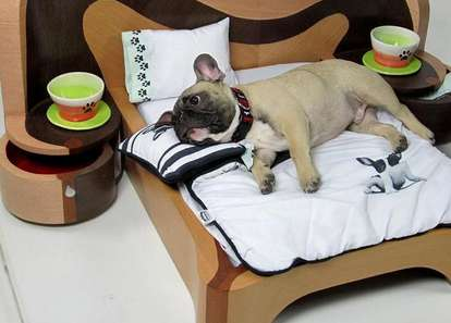 Deluxe Dog-Sized Beds