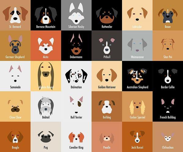 Minimalist Dog Doodles