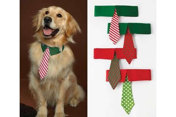 Festively Classy  Ties