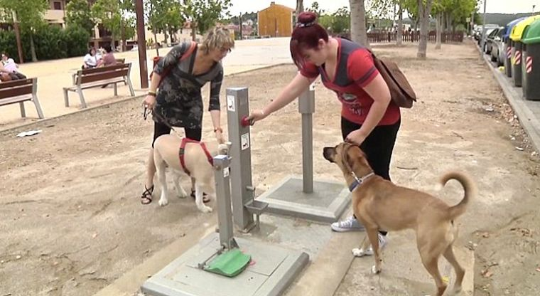 Flushable Dog Stool Stations
