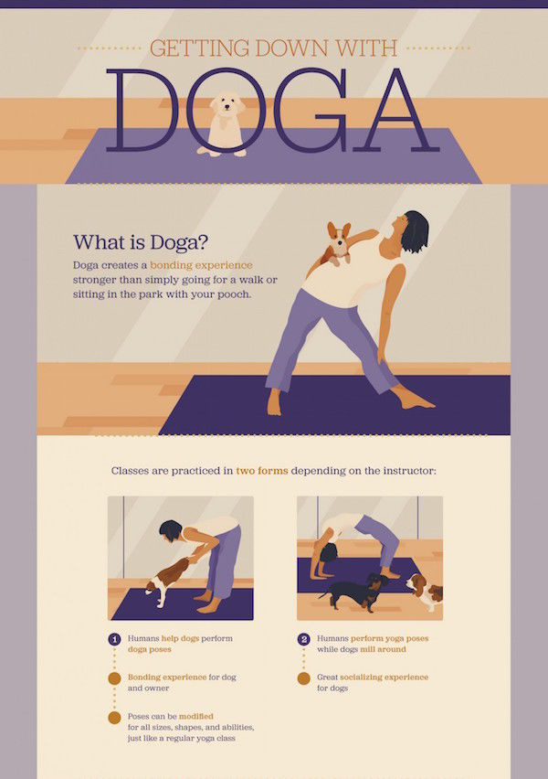Pet-Practicing Yoga Guides