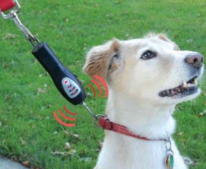 Ultrasonic Puppy Leashes