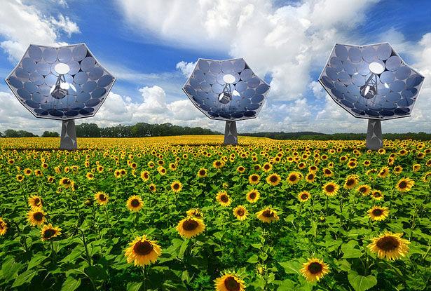 Domestic Solar Dishes